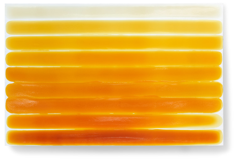 Bez-n†zvu,-2011,-lak,-barviva,-pigmenty-na-pl†tnÿ,-138x210-cm