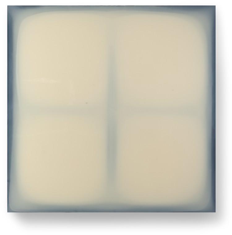 Bez-n†zvu,-2012,-lak,-barviva,-pigmenty-na-pl†tnÿ,-100x100-cm