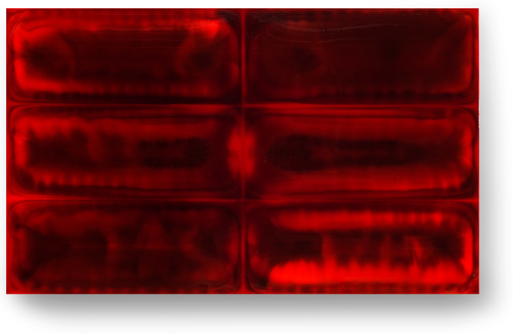 Bez-n†zvu,-2012,-lak,-barviva,-pigmenty-na-pl†tnÿ,-115x190-cm-(2)