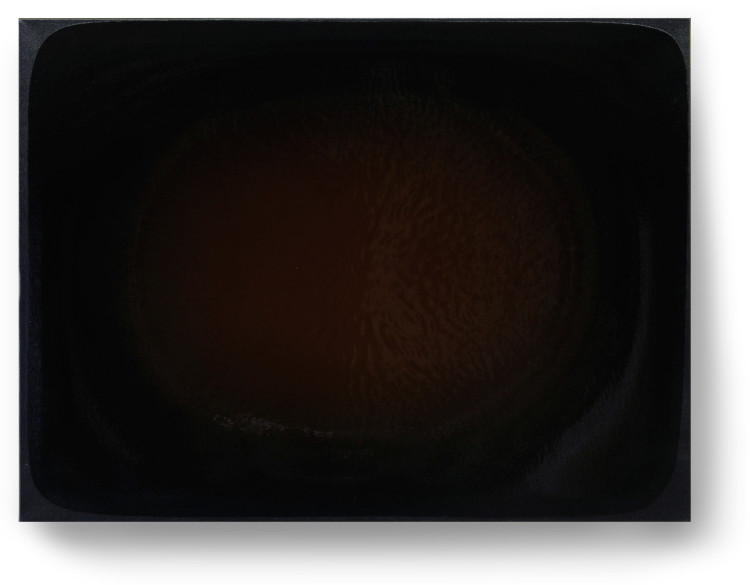 Bez-n†zvu,-2012,-lak,-barviva,-pigmenty-na-pl†tnÿ,-60x80cm-(3)