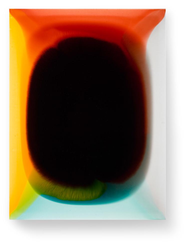 Bez-n†zvu,-2012,-lak,-barviva,-pigmenty-na-pl†tnÿ,-80x60-cm-(3)