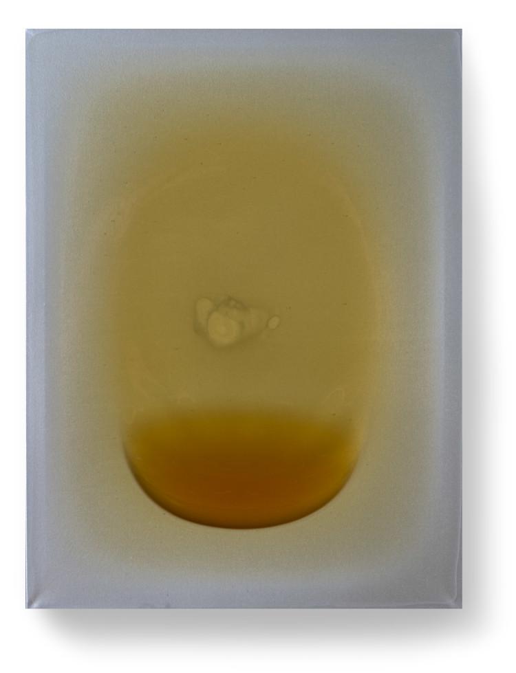 Bez-n†zvu,-2012,-lak,-barviva,-pigmenty-na-pl†tnÿ,-80x60-cm