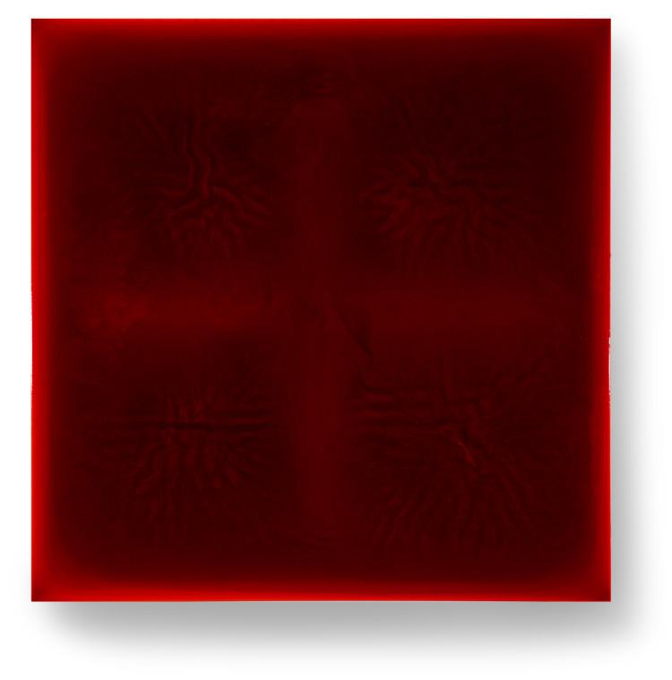 Bez-n†zvu,-2013,-lak,-barviva,-pigmenty-na-pl†tnÿ,-100x100-cm-(2)